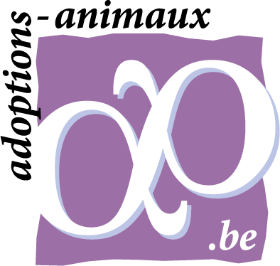adoption_animaux