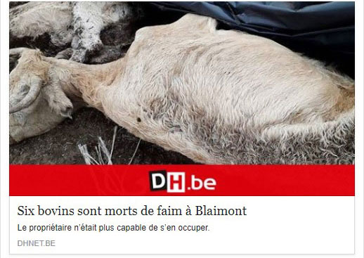 dh-Blaimont