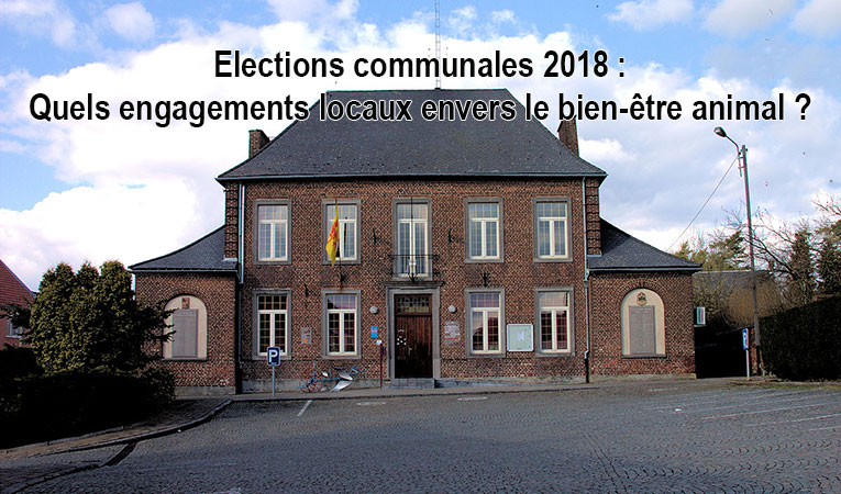 Elections_communales_lbv