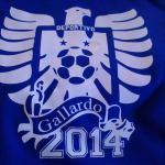 Gallardo 2014