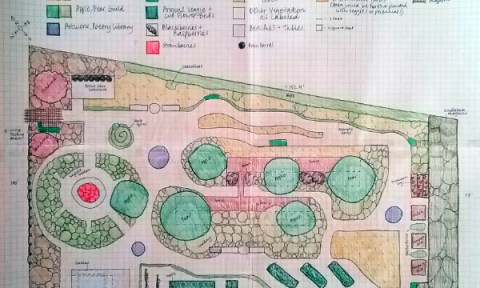Hand-drawn permaculture design of a garden.