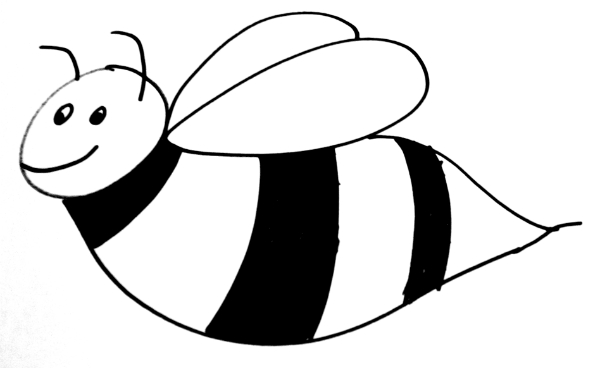 black and white drawing of a bee
