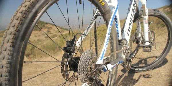 Santa cruz rent a Bike (20)