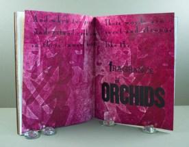 Fragrance of Orchids by Meg Johnson