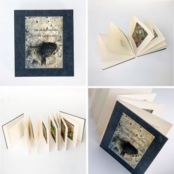 The Elder Stones by Cynthia West