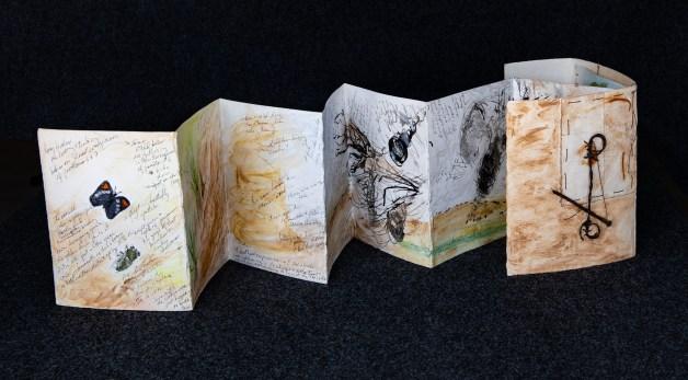 Field Notes: Elena Gallegos by Lynda Livesay