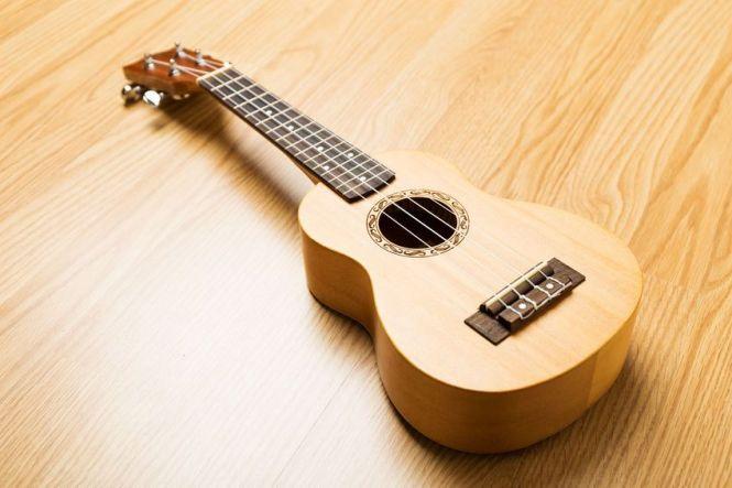 24 Contoh Alat Musik Petik Tradisional Dan Modern Lengkap