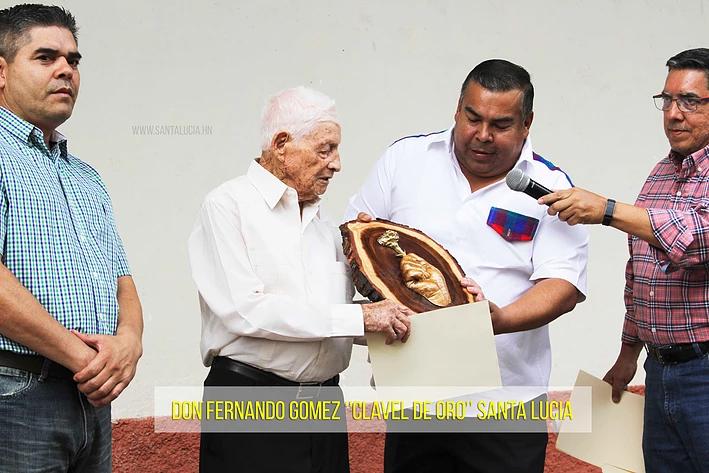 Don Fernando- Clavel de Oro