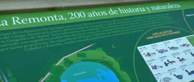 El Parque de la Remonta acogerá mañana una visita ambiental guiada