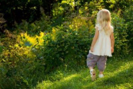 Connexion nature enfants
