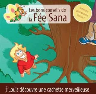 Louis Conseils Fee Sana