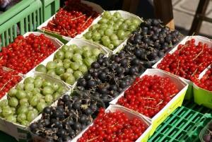 santé environnementale alimentation enfants - baies et fruits rouges