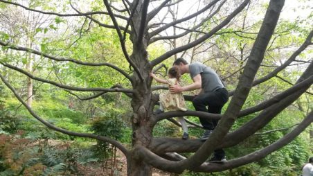 enfants grimper arbres - fille et père