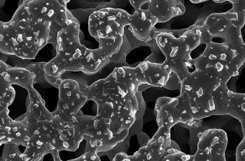 nano, nanoparticules, nanotechnologies, toxique1