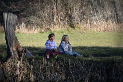 Rachel Carson printemps silencieux 5