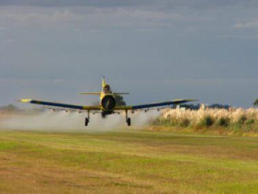 pesticides enfants risques4