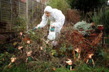 pesticides sante enfants7