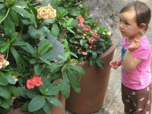 biophilie edward o. wilson - petite fille devant des fleurs