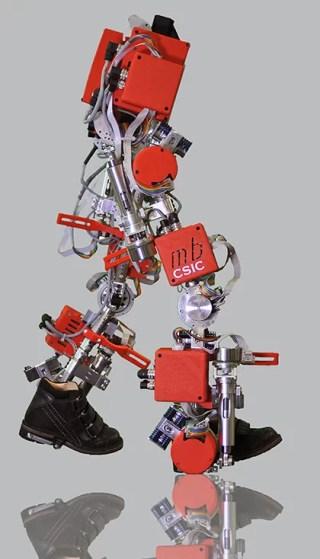 small-exoskeleton