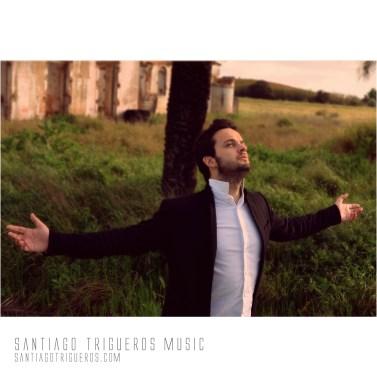 santiagotrigueros.com web 2013