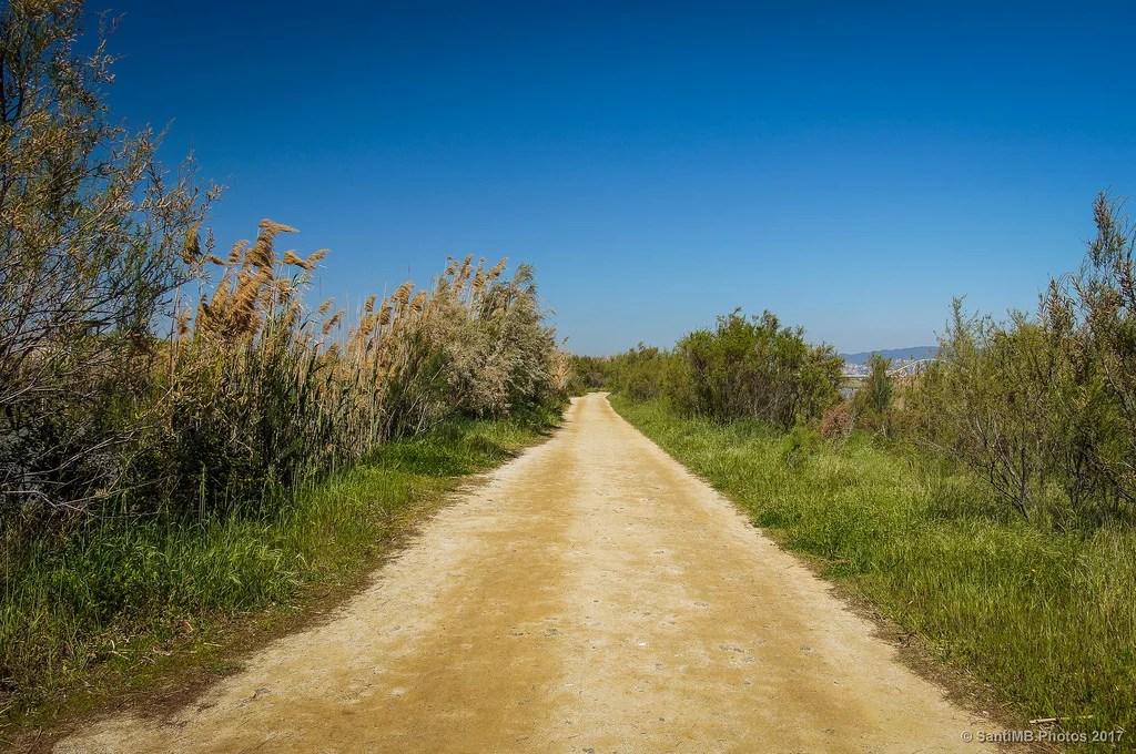 Caminos rectos