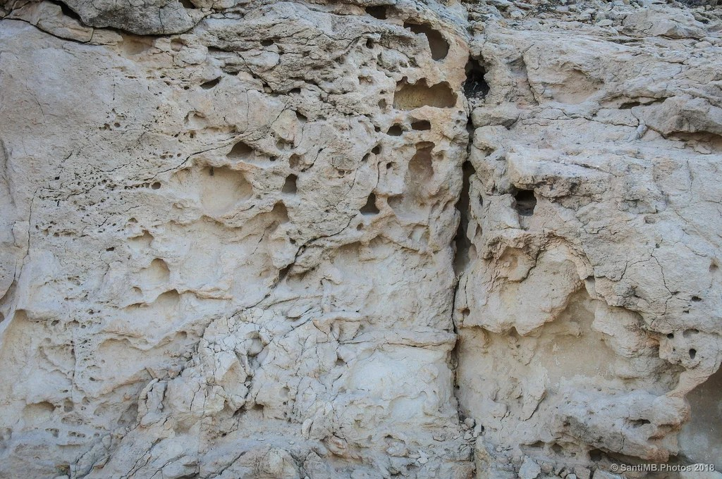 Piel de roca