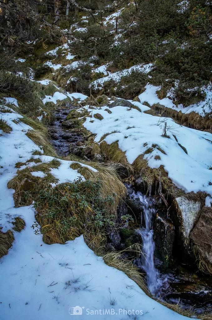Agua de nieve