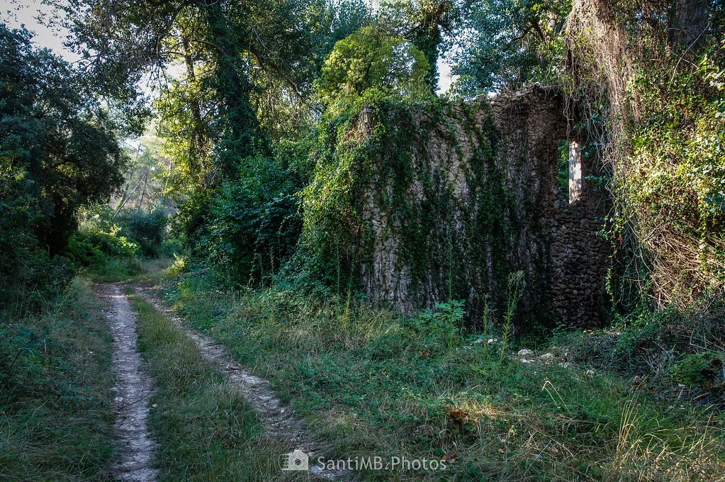 Ruinas anónimas