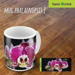 mug phalaenopsis 1