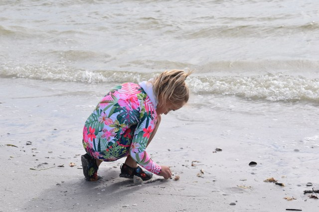Sanibel Sea School Offers Successful After School Beachcombing