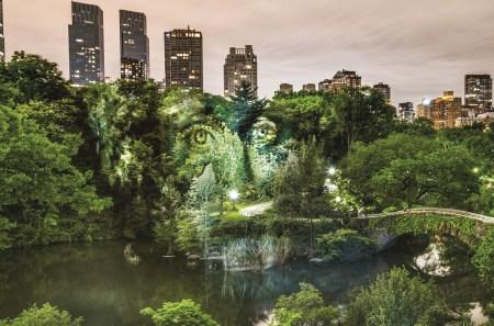 Arte de rua com tinta de luz em New York. Philippe Echaroux.