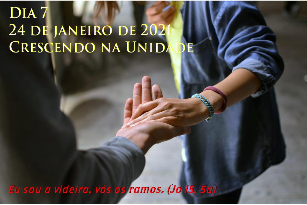 """Semana de Oração pela Unidade dos Cristão. DIA 7 - 24 JAN - Crescendo na Unidade. """"Eu sou a videira, vós os ramos"""". (Jo 15, 5a)"""