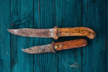 Messergriffe Holz pflegen