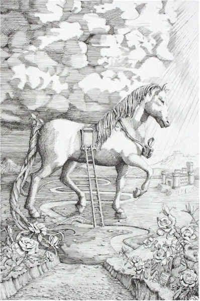 Pony Tail Santoleri
