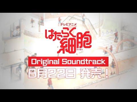【公式】TVアニメ『はたらく細胞』Original Soundtrack発売告知CM |  8月22日発売!!