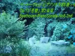 のだめカンタービレクラシック音楽集(作業用 bgm ピアノ 癒し オーケストラ 定番 人気 高音質 メドレー 感動)