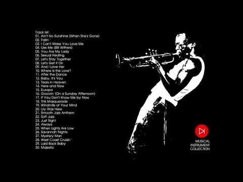 柔らかいジャズセクシーな楽器のリラクゼーションサクソフォン音楽2013コレクション
