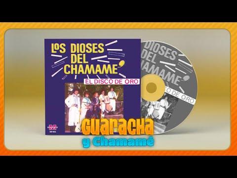Los Dioses del Chamame – Costeando el pago │ Cd El disco de Oro