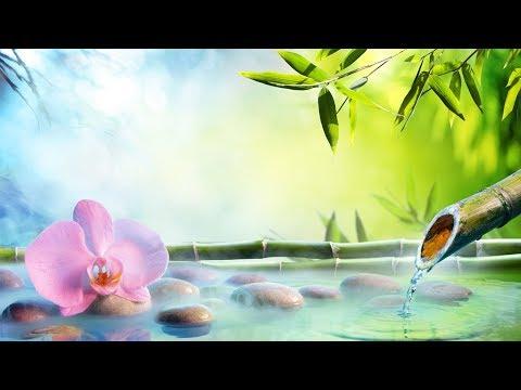 自然の音とともに音楽をリラックス バンブーウォーターファウンテン 【癒し音楽BGM】 ★2