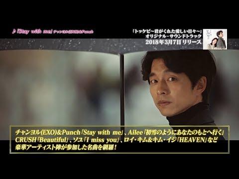 【公式】韓国ドラマ「トッケビ~君がくれた愛しい日々~」オリジナル・サウンドトラックPV