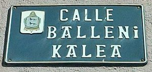 Calle Balleni