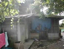 2006-06-11_35