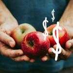 imposto-agricultura