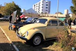 Carros Antigos (43)