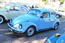 Carros Antigos (76)