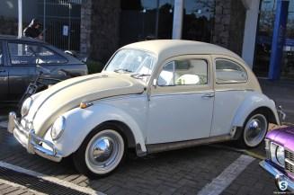 Carros Antigos (90)