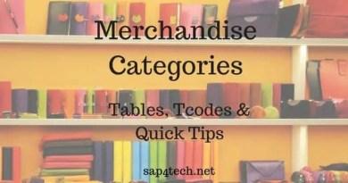 SAP Merchandise Categories