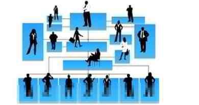 Sap Sales Organization