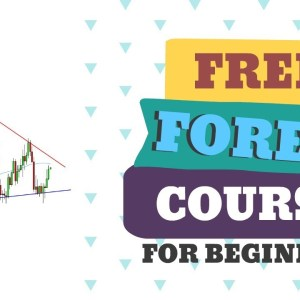 FOREX TRADING FOR BEGINNERS: TREND FOLLOWING