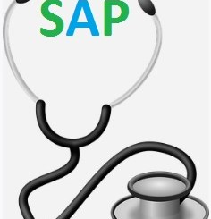 SAP Health Checks